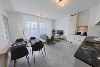 Appartement 2,5 pièces meublé 42 m2 avec parking et balcon Nyon (3)