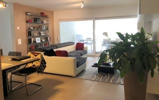 Moderno appartamento 4.5 locali con bella terrazza (4)