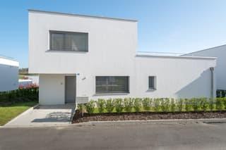 A vendre dernière villa de 2 appartements loués (3)