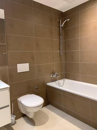 Luxuriöse 2 1/2 Zimmer Garten-Wohnung mit eigenem Waschturm (3)