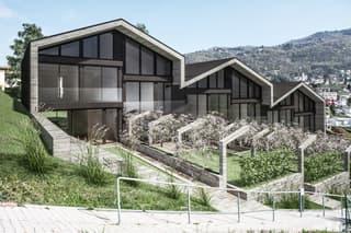 Nuove case a schiera con giardino e ampi locali (3)