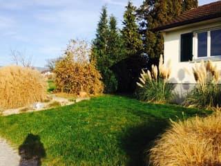 Einfamilienhaus im schönen Busskirch-Quartier (4)