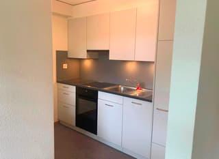 Schöne und naturnahe 1.5 Zimmerwohnung zu vermieten (3)