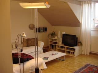 Dachwohnung in 3-Familienhaus (3)