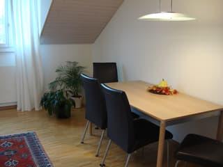 Dachwohnung in 3-Familienhaus (2)
