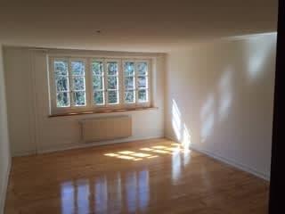 Charmante 2.5 Zimmer Wohnung zu vermieten (2)