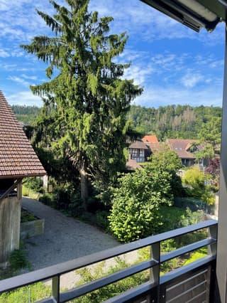 Grosszügige, lichtdurchflutete Dachwohnung in Glattfelden (3)