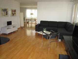 Lovely 3.5 apartment for rent (2)