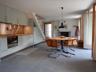 Modernes, stylisches Rustico nur 20 Min. von Bellinzona in den Bergen! (3)