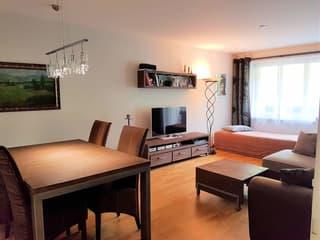 sehr schöne, möbilierte 2,5 Zi.-Wohnung in der Nähe Bahnhof Zürich-Enge (3)