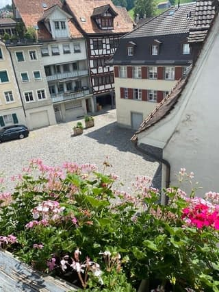4-Zimmer Dachwohnung mit Galerie (hochwertiger Ausbaustandard) (2)