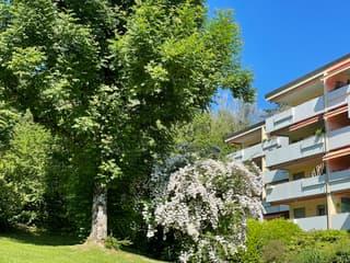 Helle, komfortable 2 1/2-Zimmerwohnung über den Dächern von Adliswil mit fantastischer Aussicht (3)