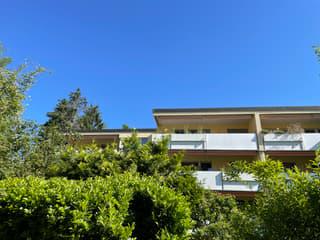 Helle, komfortable 2 1/2-Zimmerwohnung über den Dächern von Adliswil mit fantastischer Aussicht (2)