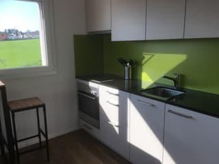Vermietung Doppel Mini-Häuser (4)