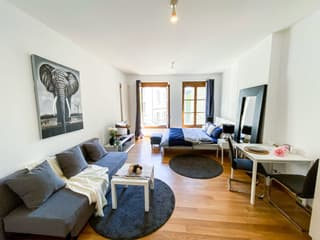 Furnished and Serviced Flats in Geneva short and long terme rent, 1-3 bedrooms (2)