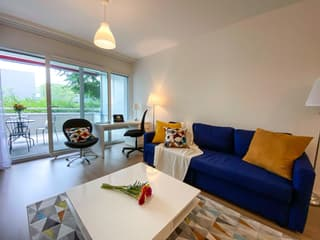 Furnished and Serviced Flats in Geneva short and long terme rent, 1-3 bedrooms (4)