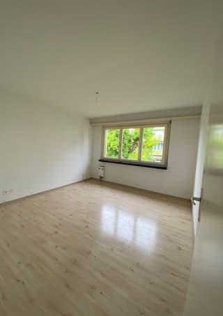 4.5 Zimmer-Wohnung mit Einzelgarage (3)