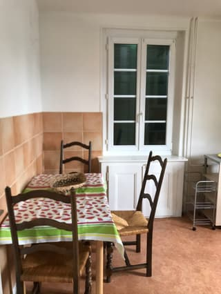 Lausanne Sud Nice furnished 1 september (4)