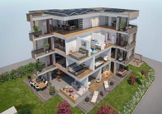 5 ½ Zimmer Dachwohnung (4)