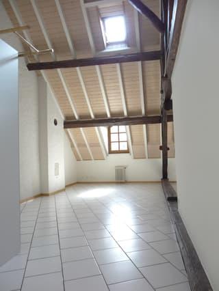 Studio à Carouge GE (3)