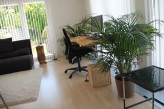 modernes Business-Appartement mit grosser Terrasse (2)
