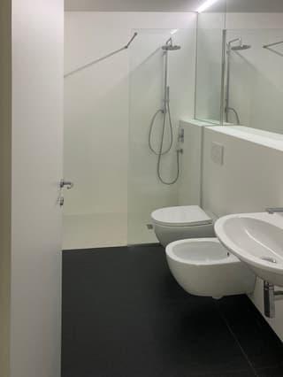 Moderno e luminoso appartamento - 3 locali (3)