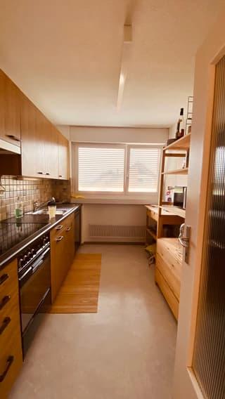 Apartment in Zurich Kreis 2 (3)