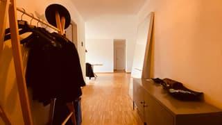Apartment in Zurich Kreis 2 (2)