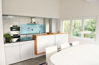Ihr Wohntraum auf über 500 m² (3)