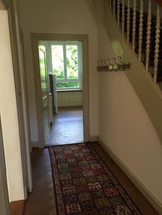 Villa in Basel (4)