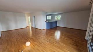Wunderschöne EG-Wohnung in Zürich Seebach (3)