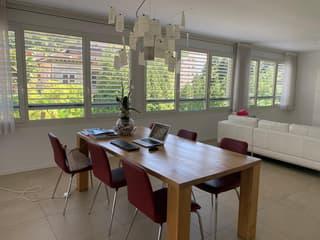 Appartamento a Mendrisio (2)