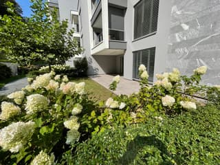 Appartamento 3,5 loc. con giardino in Paradiso (3)