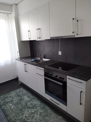 Appartement 2 pièces rénové à Gimel (2)