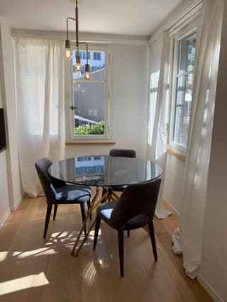 Luxurious furnished 2 bedrooms Flat 87m2  30 meters from Bahnhofstrasse (3)