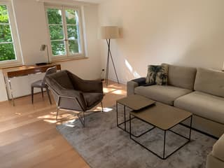 Luxurious furnished 2 bedrooms Flat 87m2  30 meters from Bahnhofstrasse (2)