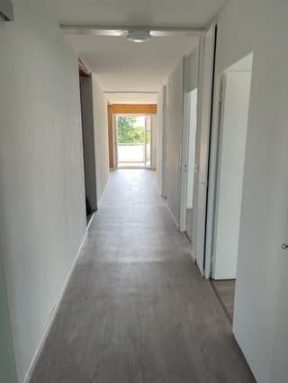 Frisch renovierte Wohnung in Niederwil (4)