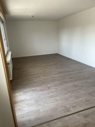 Frisch renovierte Wohnung in Niederwil (2)