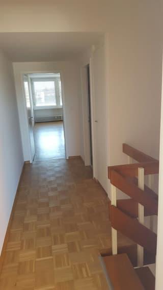 moderne, geräumige 3 Zimmer Duplex Wohnung zu vermieten (2)