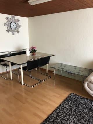 Mehrfamilienhaus in Arth (2)
