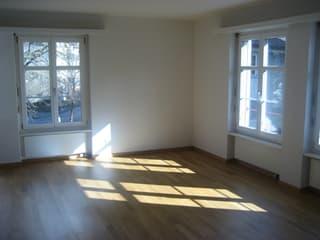 Helle 1.5-Zimmer-Wohnung an zentraler Lage (3)