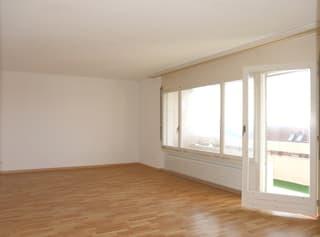 4.5 Zimmer Wohnung in ruhigem Quartier mit wunderschöner Aussicht (3)