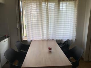 2 Zimmerwohnung  in Affoltern am Albis (4)