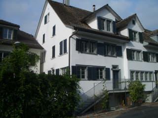 Historisch modernes Flarzhaus (2)