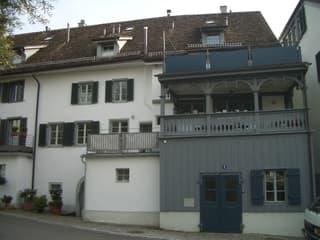 Historisch modernes Flarzhaus (3)
