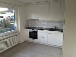 12 Familienhaus (jeweils 3 1/2 Zimmer-Wohnungen) in Kreuzlingen (2)
