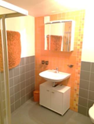 Appartement en terrasse à Fontaine Dessus (Liddes) (4)