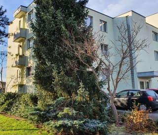 Wohnung in Balgach (2)