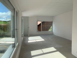 Ihr neues Büro oder Studio im Eichacher Aesch ZH in lichtdurchfluteten Räumen (3)