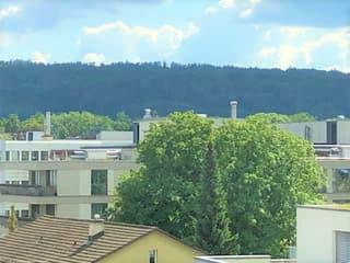 Freundliche helle Neubauwohnung mitten im Zentrum Wallisellen (3)